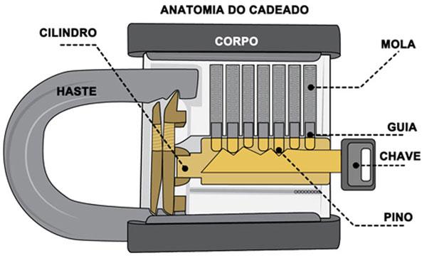 Anatomia de Um Cadeado Tradicional